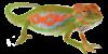 chameleon Esqode